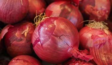 red-onions-vegetables-499066_1920-1024x768