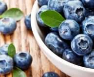 Bowl-of-blueberries-751x426-690x380