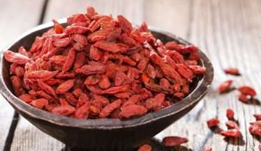 Healthy Goji Berries