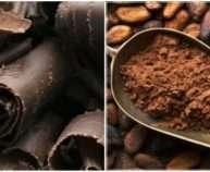 kakao-e1474627182556