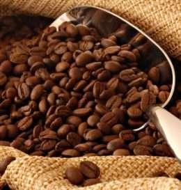 kafein3