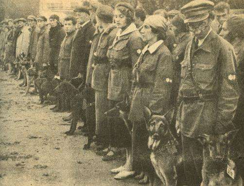 soviet-dog-training