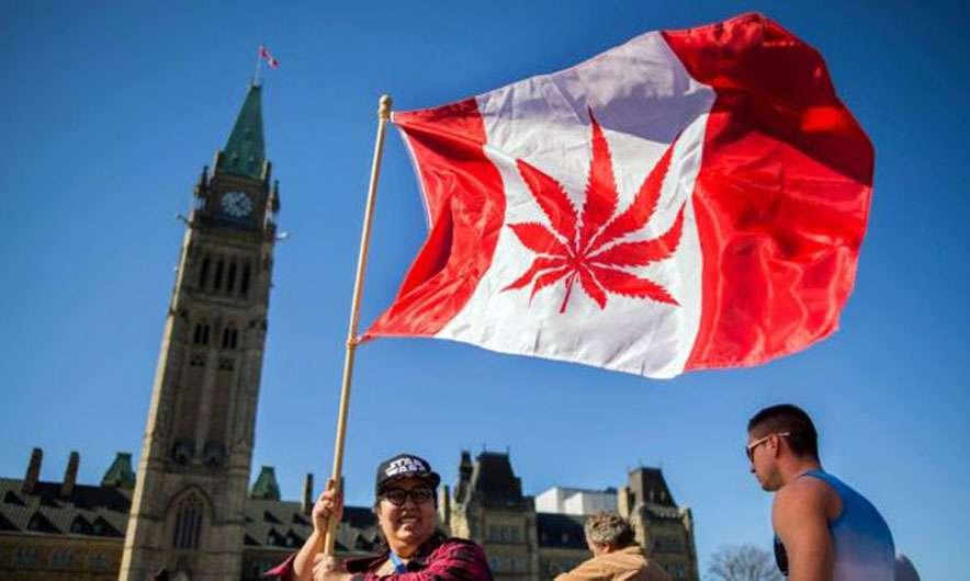 kanada-legalizohet-kanabisi